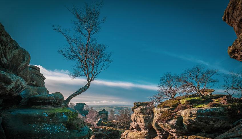 The Brimham Rocks on the Nidderdale Way