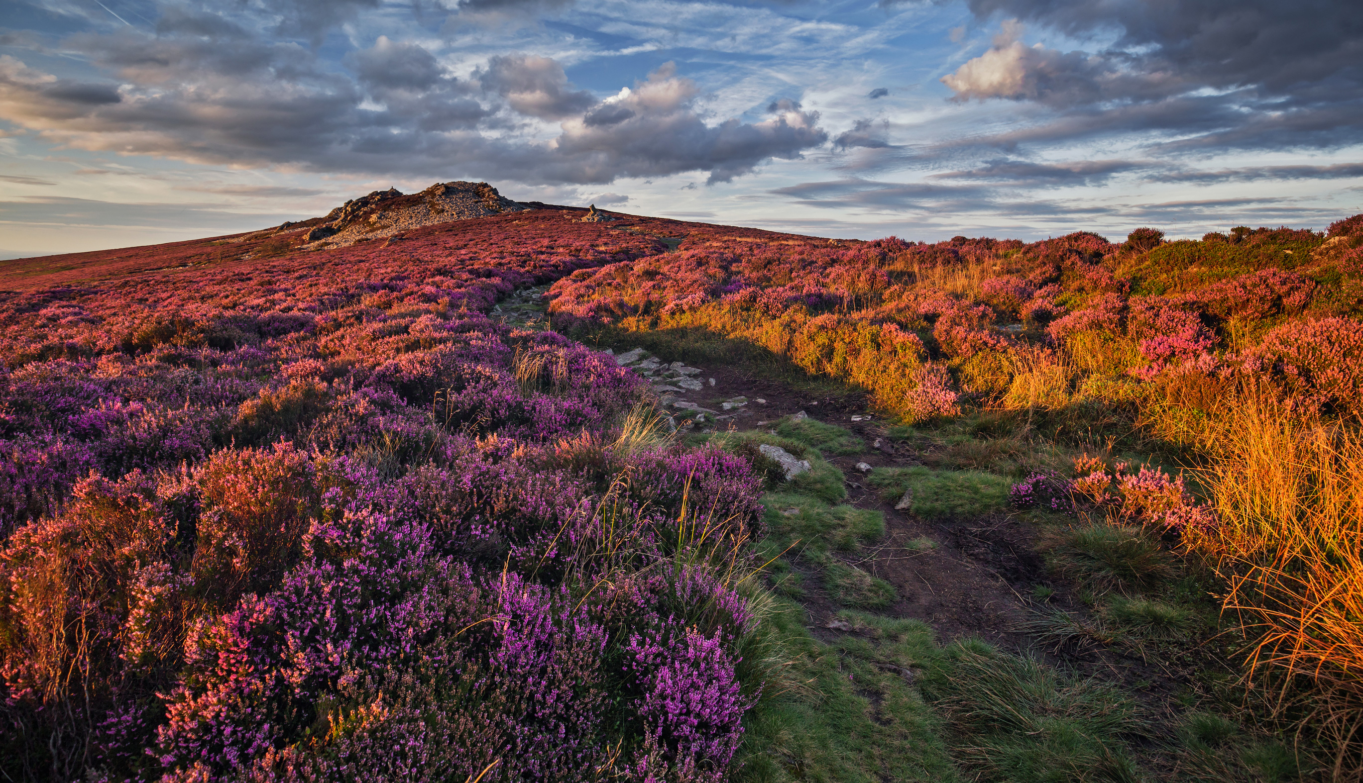 The Stiperstones on the Shropshire Way