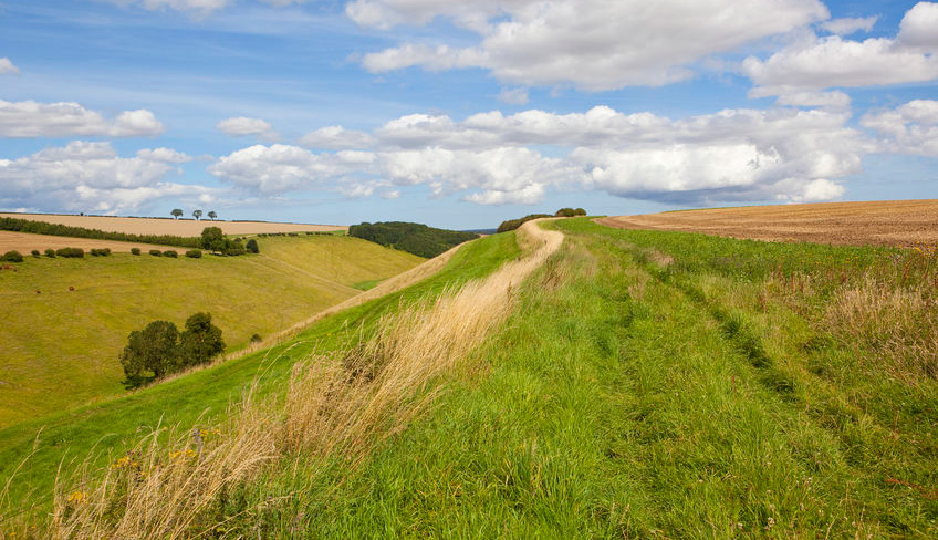One of the many dales along the Yorkshire Wolds Way